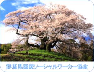 群馬県医療ソーシャルワーカー協会