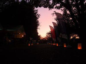 ドーンパープル朝日
