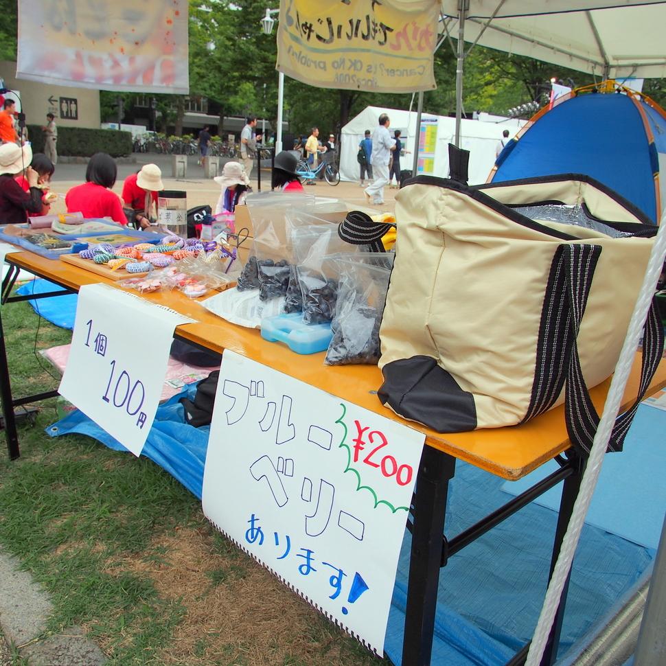 2011shinyokohama_26